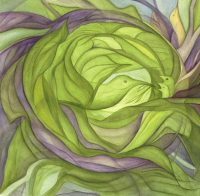 Nesting Cabbage print