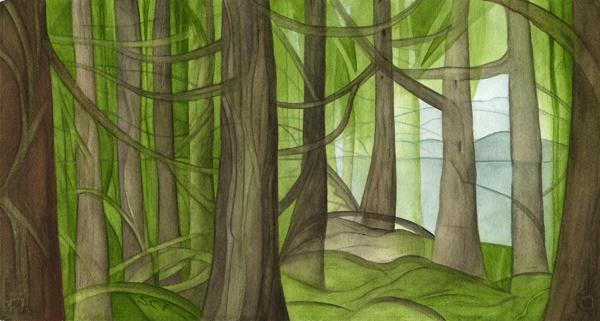 Mountain Running Thru Forest