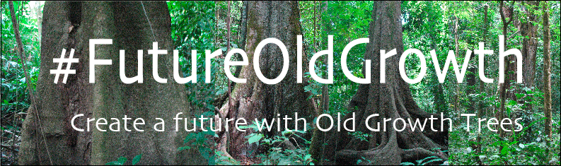 FutureOldGrowth